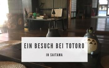 Ein Besuch bei Totoro