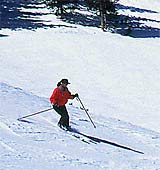 skiing_photo