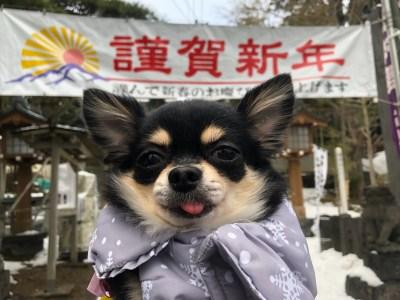 銀座ママパワースポット巡り 秋田で生うに 男鹿半島は美味しいものがいっぱい