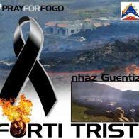 Fogo, cartelli d'aiuto pubblicati sul web, novembre-dicembre 2014 - 19/20