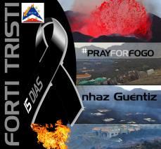 Fogo, cartelli d'aiuto pubblicati sul web, novembre-dicembre 2014 - 5/20