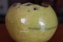 vasetto pensile verde acido