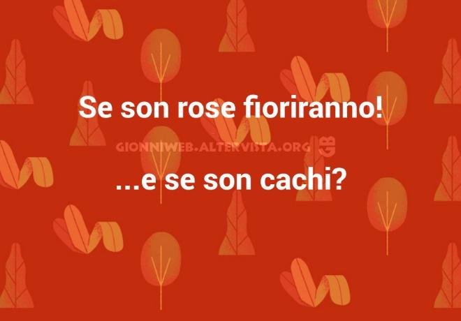 A 11 Se Son Rose Gionniweb