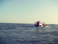 Une sortie dans la Mer Noire. Crédit photo: archive personnelle