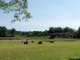 Parco del Curone