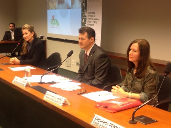 Deputado Giovani Cherini propõe debate sobre a criação de órgão municipal para cuidar dos animais