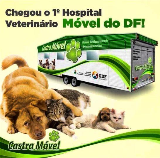 castramovel brasilia df