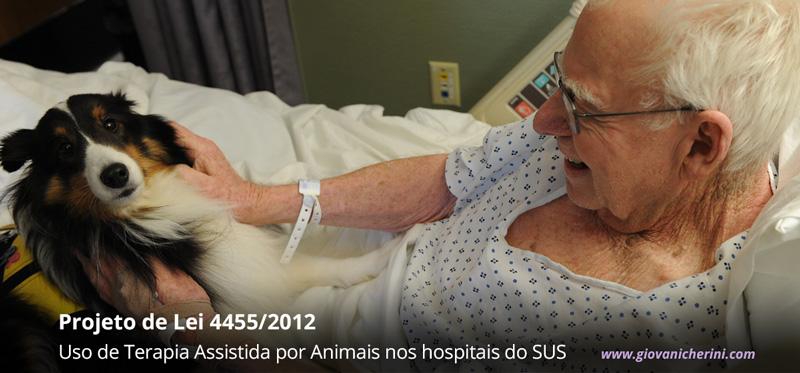 projeto-de-lei-4455-2012-terapia-assistida-animais-giovani-cherini
