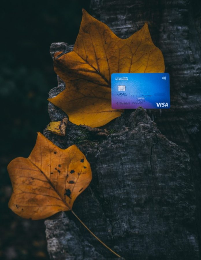 Revolut Card Autumn