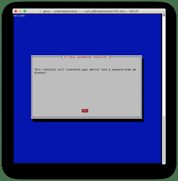 Pi-hole: installazione e prima configurazione (Aggiornato) 1