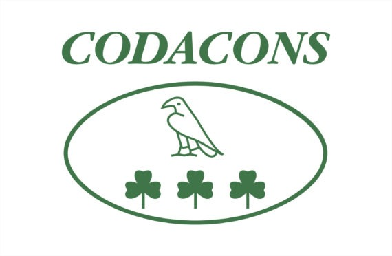 Codacons: qui nessuno è esperto.