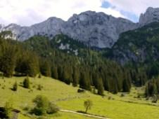 Blick zur Nordseite des Scheffauer © Gipfelfieber.com