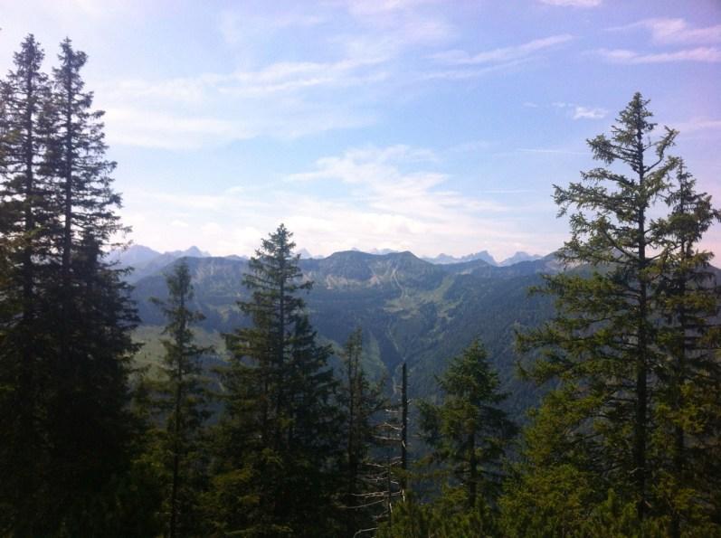 Langsam verlassen wir den Wald © Gipfelfieber.com