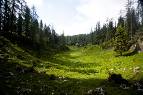 Der Wachterlsteig windet sich empor © Gipfelfieber.com