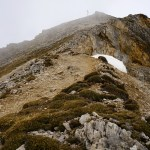Die letzten Meter © Gipfelfieber.com