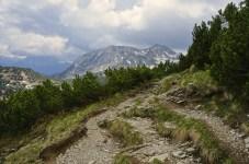 Ab hier ist der Weg eher ungeeignet zum Biken © Gipfelfieber.com