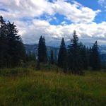 Auf der verfallenen Hochkienbergalm © Gipfelfieber.com