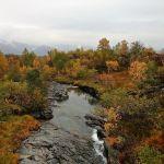 Herbstliche Farben © Gipfelfieber.com