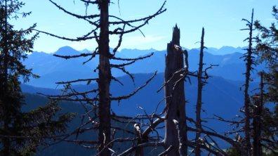 Ausblick am Geierstein © auf-den-berg.de
