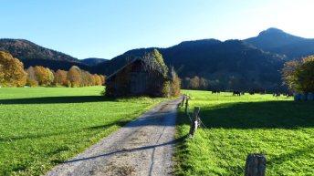 Almwiesen am Geierstein © auf-den-berg.de