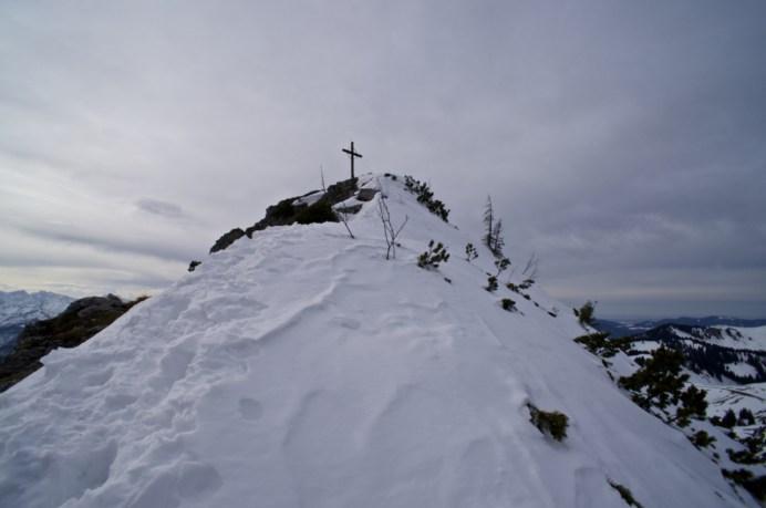 Grat zum Roßstein-Gipfel © Gipfelfieber.com
