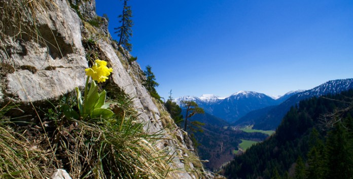 Der Hausberg von Oberammergau – der Kofel