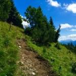 Der Steig nach der Ranggenalm © Gipfelfieber.com
