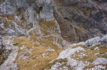 Spektakulärer Steig © Gipfelfieber.com