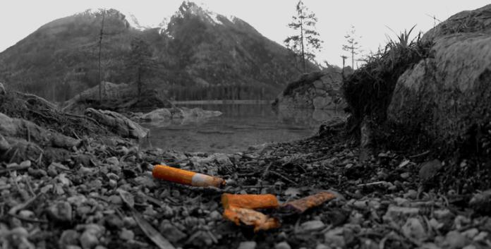 Warum nur, lieber Raucher?