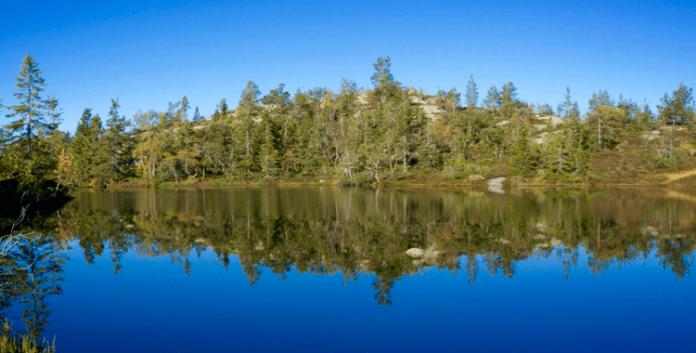 Wandern zum Venelifjell: Im Herzen der Telemark