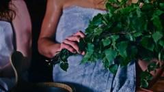 Birkenzweige zum Fächern ©Visit Finland