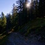 Im Ammerwald ©Gipfelfieber