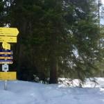 Richtung Seebenalm & Coburger Hütte ©Gipfelfieber