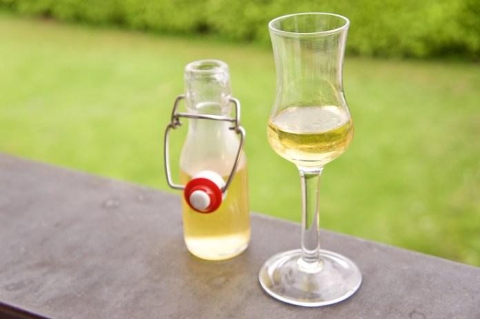 Selbst gemachter Fichtenspitzen Likör: Wald zum Trinken ©Gipfelfieber