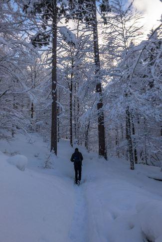 Durch den Schnee ©Gipfelfieber