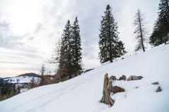 Winter auf der Teichalm ©Gipfelfieber