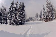 Tiefverschneite Landschaft ©Gipfelfieber