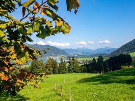 Herbstwandern im Chiemgau und Kaiserwinkl: Sechs Touren für Genießer ©Gipfelfieber
