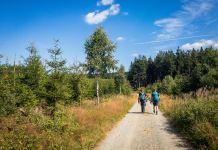 Projekt 16 Gipfel: Der Langenberg - In NRW ganz oben ©Gipfelfieber