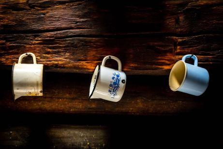Auf der Karseggalm im Großarltal: Zurück zum Ursprung ©Gipfelfieber