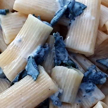 Pasta al gorgonzola Outdoor-Rezept