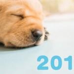 猫や可愛いイラストの2018年新作カレンダーを気になるあの娘に渡したい!