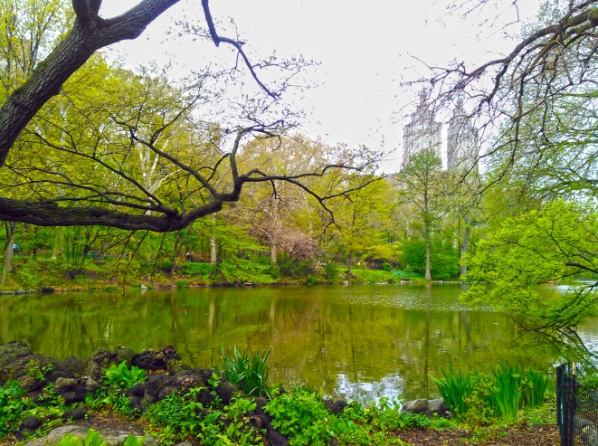 Secluded cove near the Lake, Central Park © 2016. Maddy - The Gipsy Geek