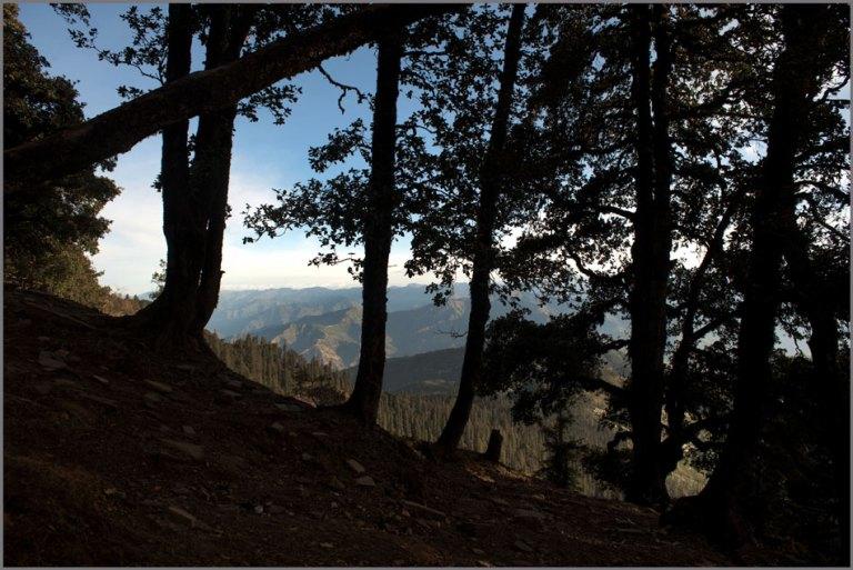 Hatu Peak-Narkanda (14)