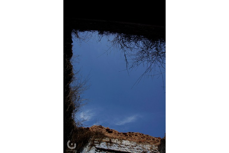 _RIDE-141319 (54)
