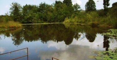 Ördek Gölü