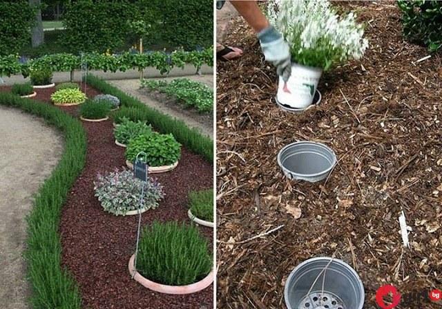 Ако искате съседите да ви завиждат за градината, задължително трябва да пробвате ТЕЗИ идеи!