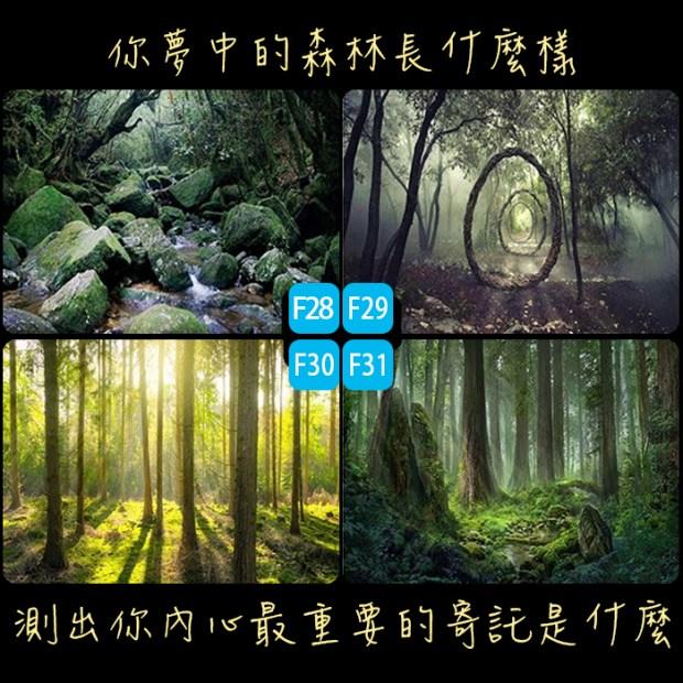 235_你夢中的森林長什麼樣,測出你內心最重要的寄託是什麼_主圖.jpg