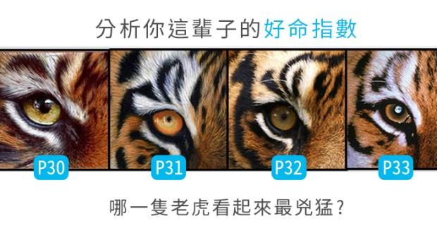 273_哪一隻老虎最兇猛,分析你這輩子的好命指數_主圖.jpg