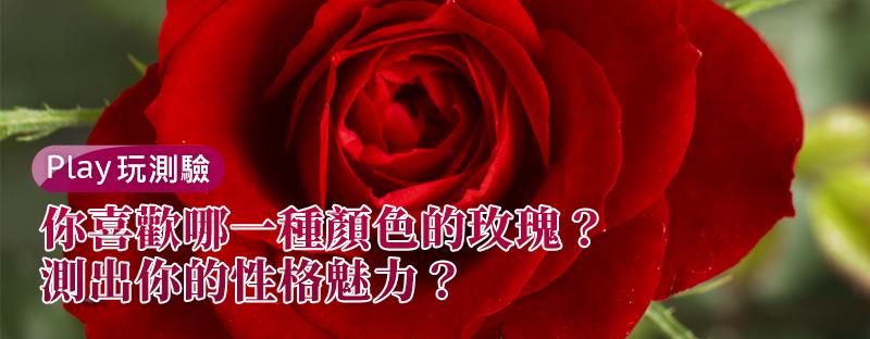 【個性心理測驗】你喜歡哪一種顏色的玫瑰?測出你的性格魅力?